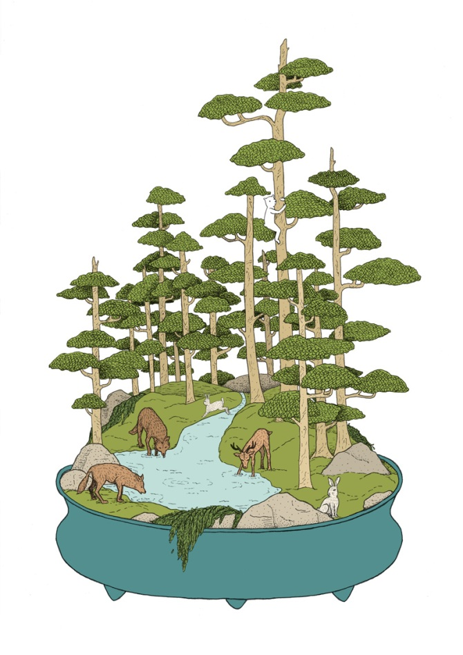 AD_BONSAI-FORREST