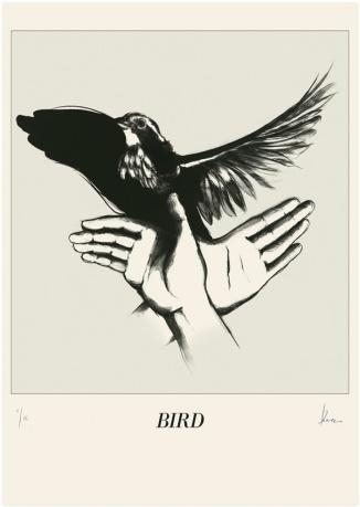 Bird_Screenprint