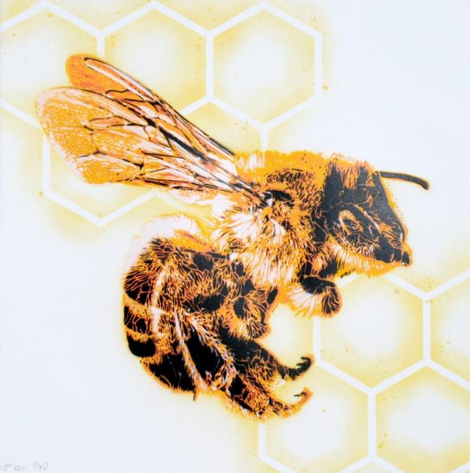 23_bees_y